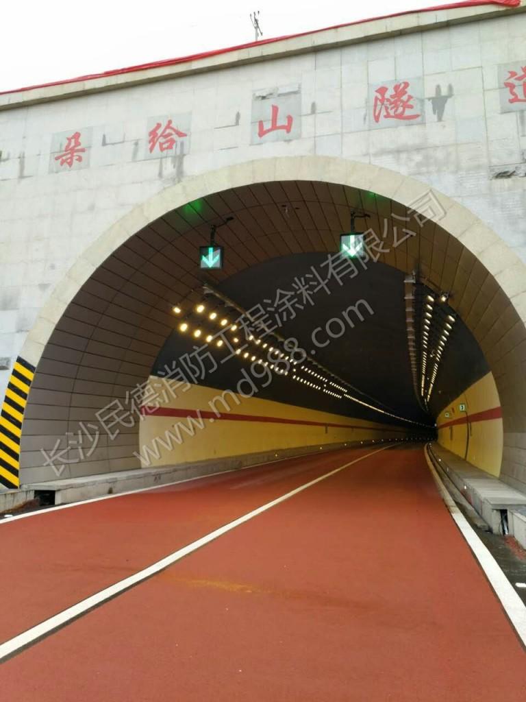 青海牙同高速隧道2